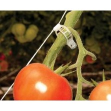 CLIP TOMATE 28MM. 100 ud